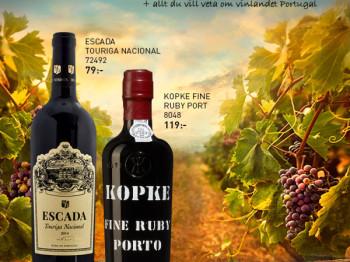 Allt du vill veta om vin från Portugal