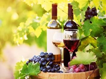 Allt du behöver veta om spanskt vin