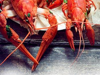 Vad dricker man till snygga skaldjur och fula fiskar?