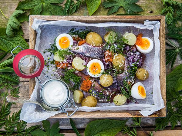 Matjesfiléer med ägg, pepparrot och brynt smör