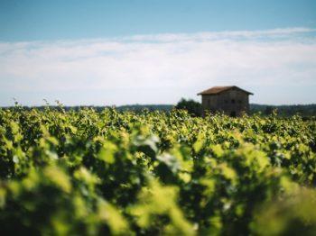 Fem snabba om Bordeaux