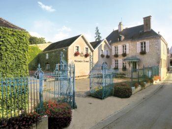 Den bästa byn i Champagne för Pinot Noir?
